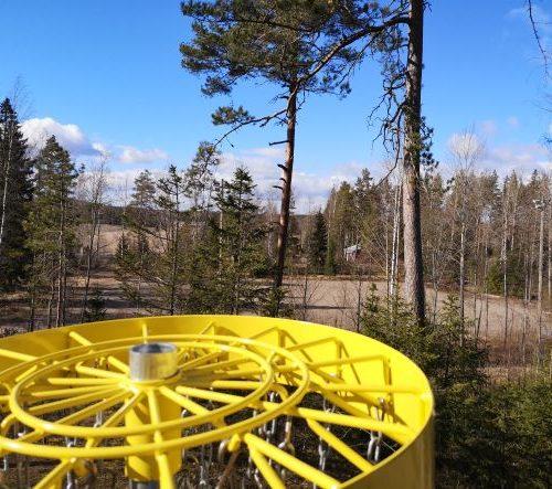 Röyläntuvan Frisbeegolf maisemaa